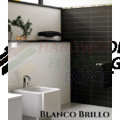 MELANGE, BLANCO BRILLO, EVOLUTION, 2593, 4X16, CERAMIC WALL TILE